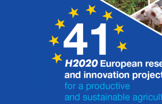 EUCLID in new publication on Horizon 2020 projects by ACTA